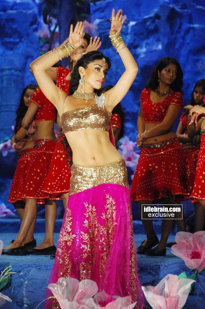Shriya Saran Awesome Body Wallpapers