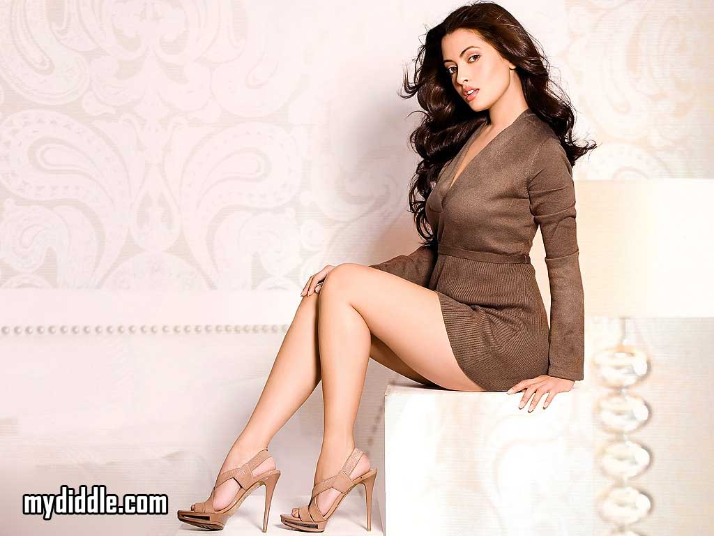 Riya Sen Latest Hot Wallpaper