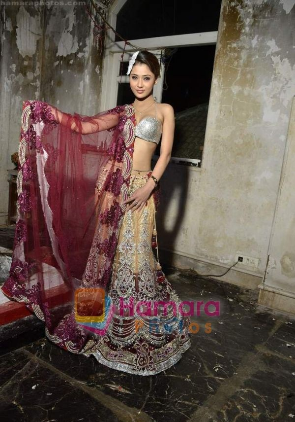 Hot Sara Khan Sexy Photoshoot in Saree