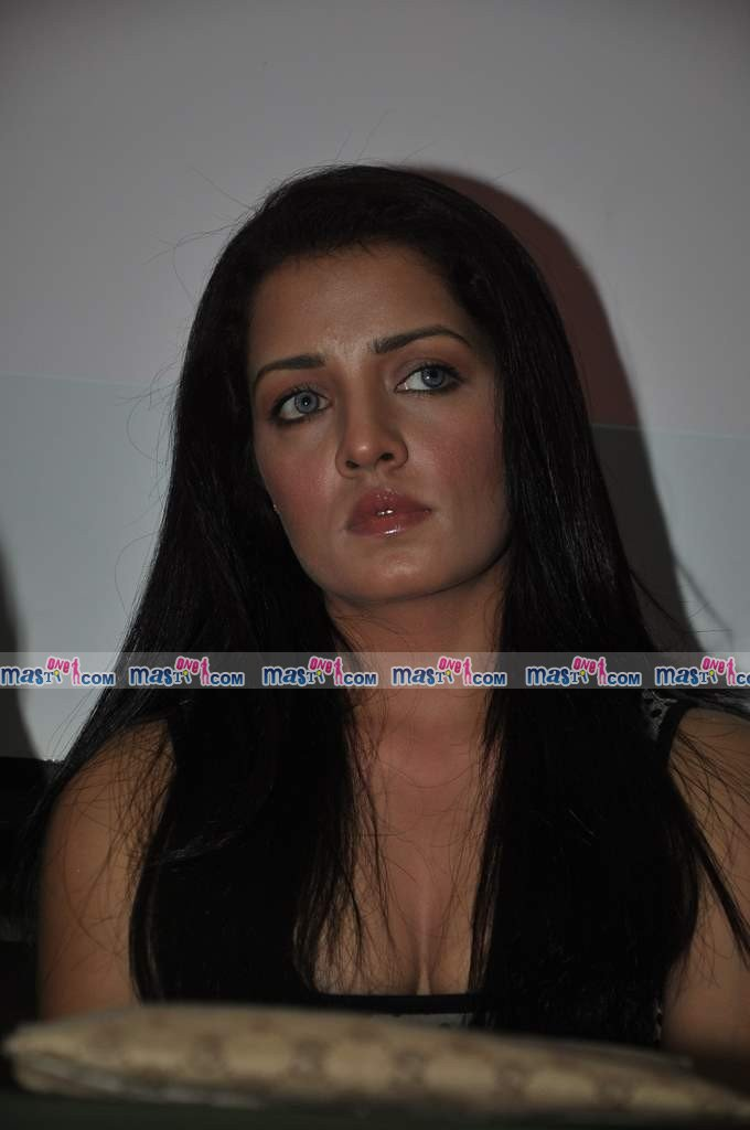 Celina Jaitley at Kashish Mumbai International Queer Film Festival Press Meet