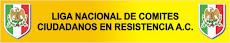 POESIA CULTURA Y ACCION SOCIAL NO VIOLENTA  RESISTENCIA CIVIL PACIFICA