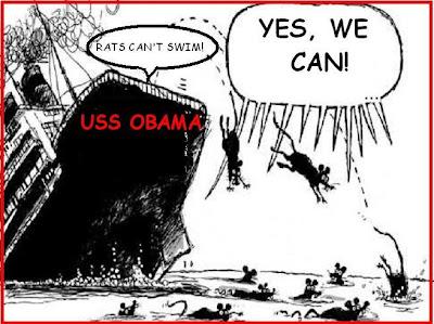 demc-rats+from+sinking+ship.JPG
