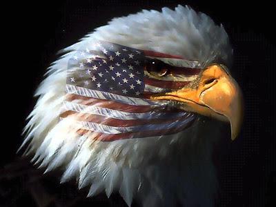 http://3.bp.blogspot.com/_WMpSC7nK3os/SRIVAa2BNHI/AAAAAAAAC3Q/BT8gHs2xTMw/s400/American_Eagle.jpg