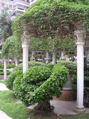 Park o trädgård