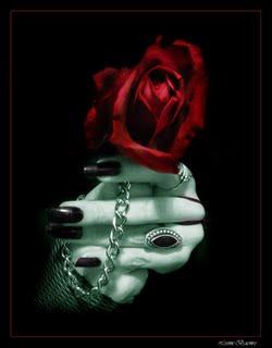 Mis manos aun sostienen la rosa que una noche me diste