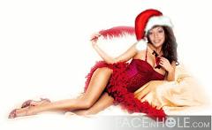 Feliz Navidad y Feliz año 2010