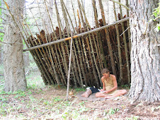 primitive shelter