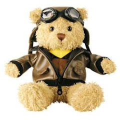 Pilot Bear from Cathay Pacific Airways: USD12