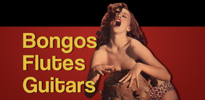 Bongos/Flutes/Guitars