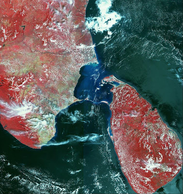 Satellite image of Bridge to Lanka,Sri Ram Sethu