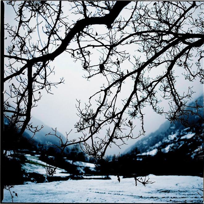Areu, hivern