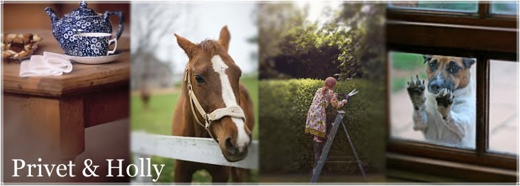 Privet and Holly