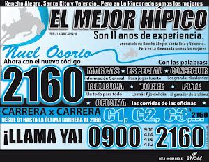 EL MEJOR  HIPICO