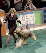 Udo winning Group One Animal Planet broadcast