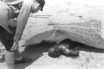 Fotos das vitimas da bomba atomica 87
