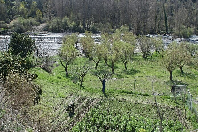 A farmer working the land along the Río Cádiar on a spring morning - photo: casa rural El Paraje