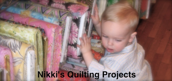 Nikki's Quilting Projects