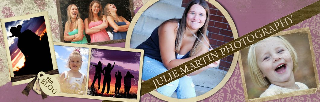 Julie Martin Photography - Newborn, wedding, seniors, children photographer Westphalia, MI