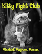 Kitty Fight Club