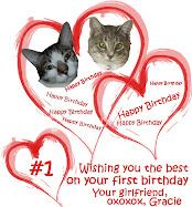 Barney's First Birthday