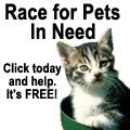 Race for Pets