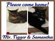 Come Home Soon Mr. Tigger
