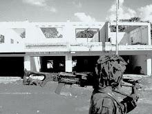 Our Derms city