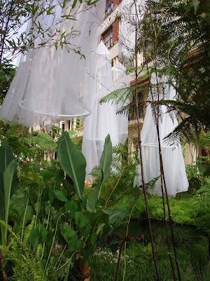 Junio 2007 ~ jardinería y paisajismo. (paisajismo sostenible)