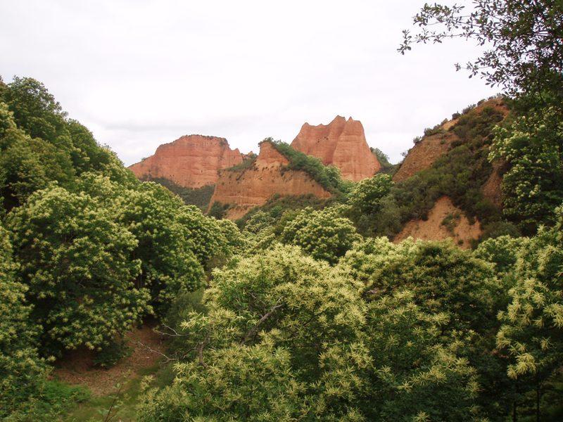 Curso land art arte naturaleza y paisaje jardiner a y for Autoarq paisajismo