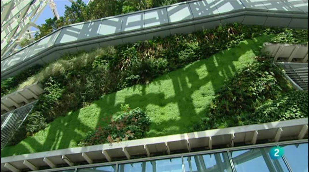 Documental muros verdes jardines verticales y cubiertas for Muros verdes arquitectura