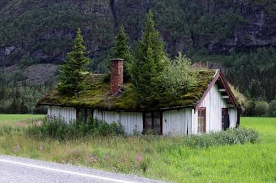 Tejados verdes Noruega