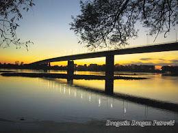 Novi most na Savi