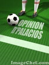opiniones d Palacios