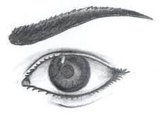 o olho que tudo ver