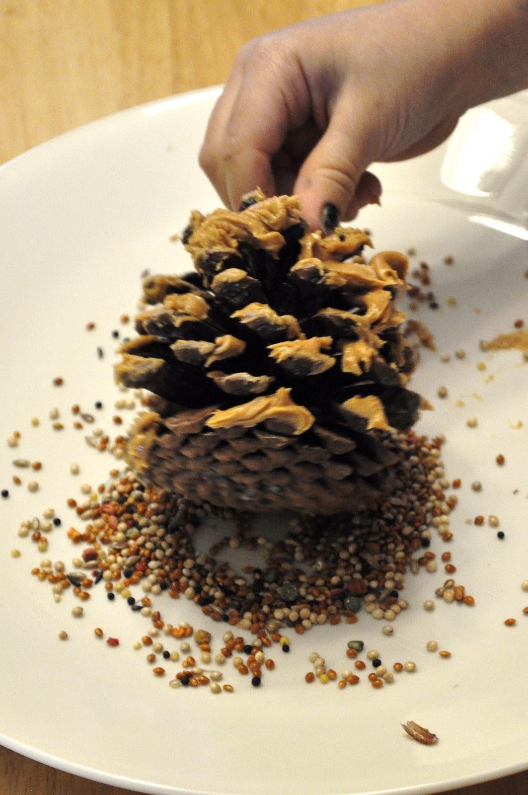 Pine Cone Bird Feeder Kids Activities Saving Money