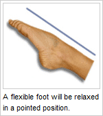 flexible foot
