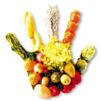 saludable alimentacion