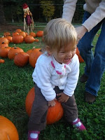 pumpkin patch winston salem