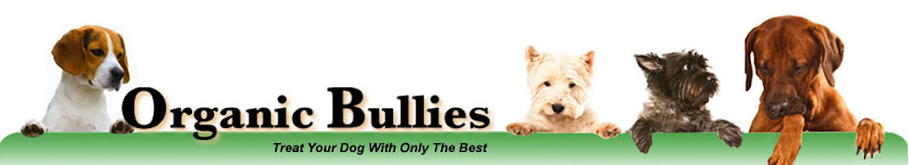 Organic Bullies Doggy Educational Blog
