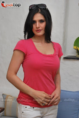 Zarine Khan Sizzling Hot Pictures