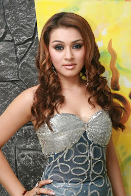 Sizzling South Indian Actress - Haniskha