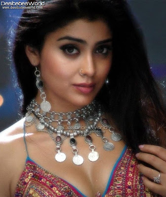 Shriya Saran Sizzling Hot & Spicy Pictures