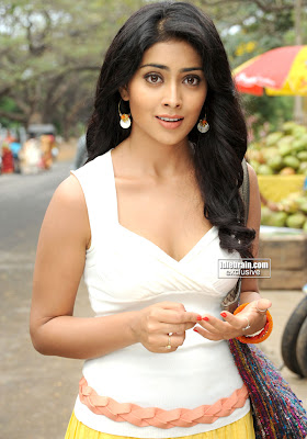 Hot & Sexy South Queen Shriya Sharan Hot Pictures