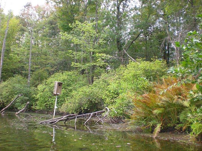 lake arthur fishing hidden river
