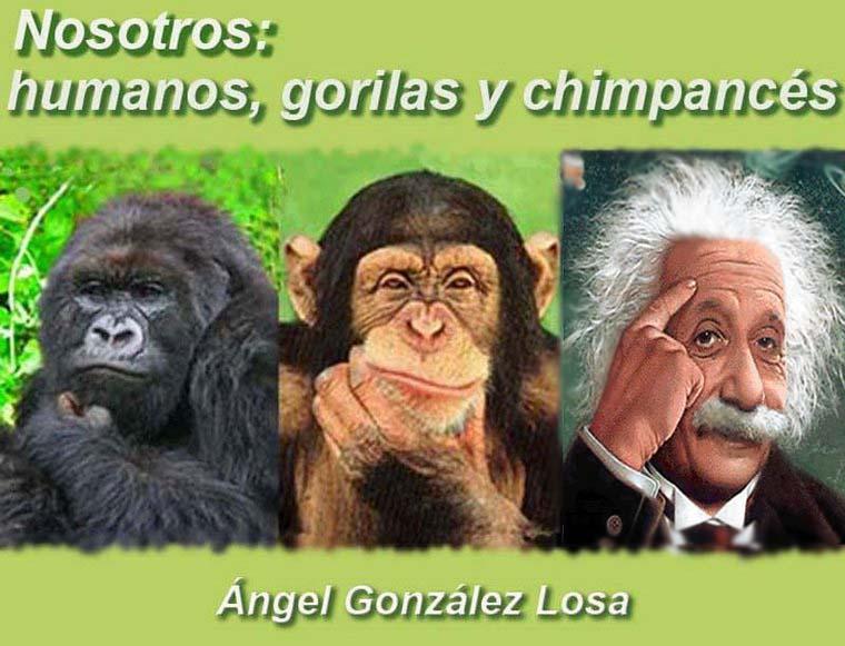 Nosotros: Humanos, Gorilas y Chimpancés