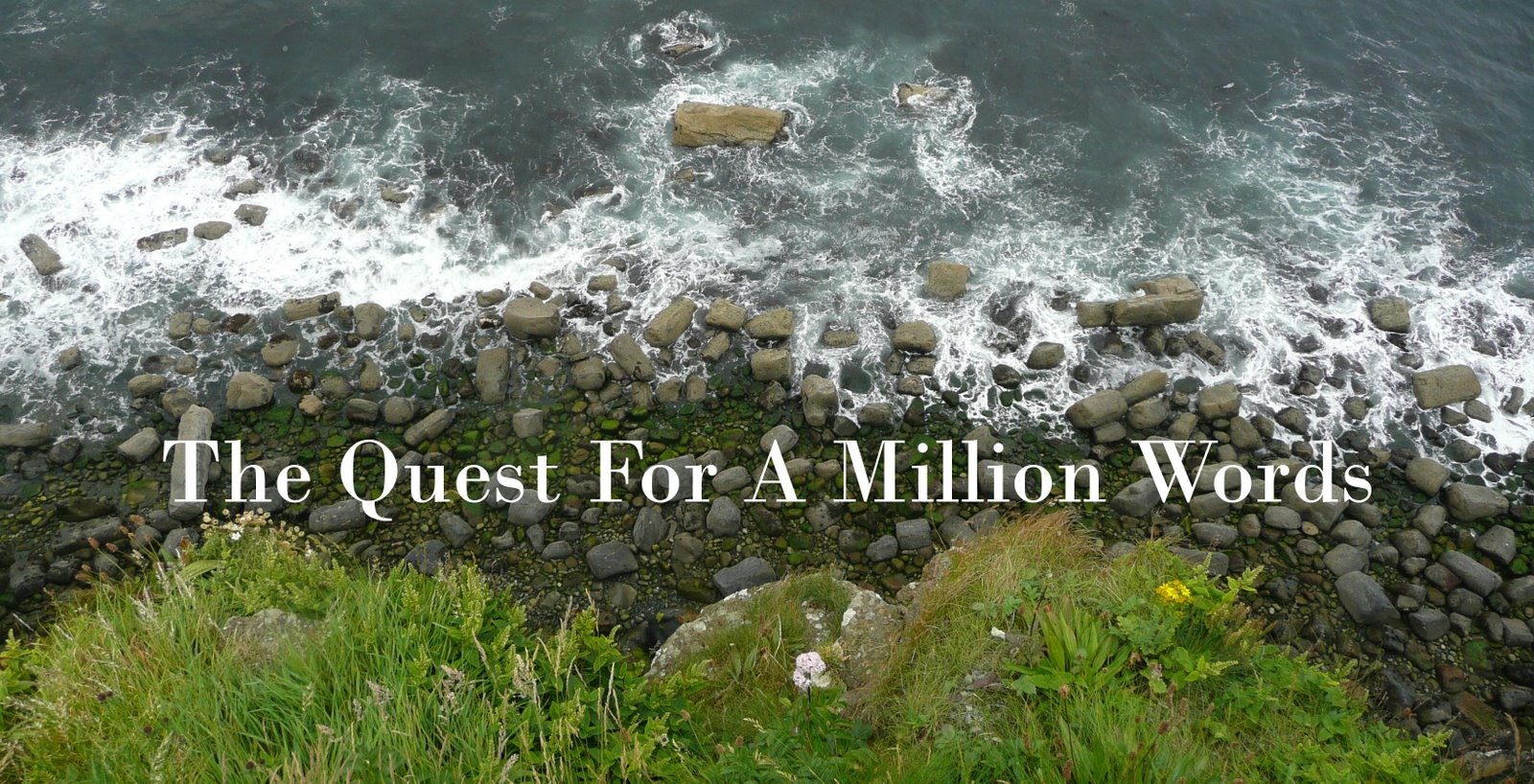 The Quest for a Million Words