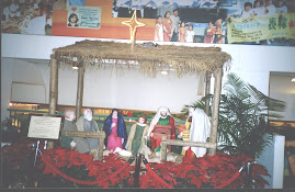 Y.M.C.A Centre in Hongkong during Christmas festive season.(Monday 12-12-2005)