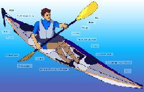 Clases de KayaK por animacion