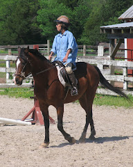 Sabi (DLA Dreams Amastar) REHOMED IN 2012!  LIVING WITH HIS GRANDMOTHER!