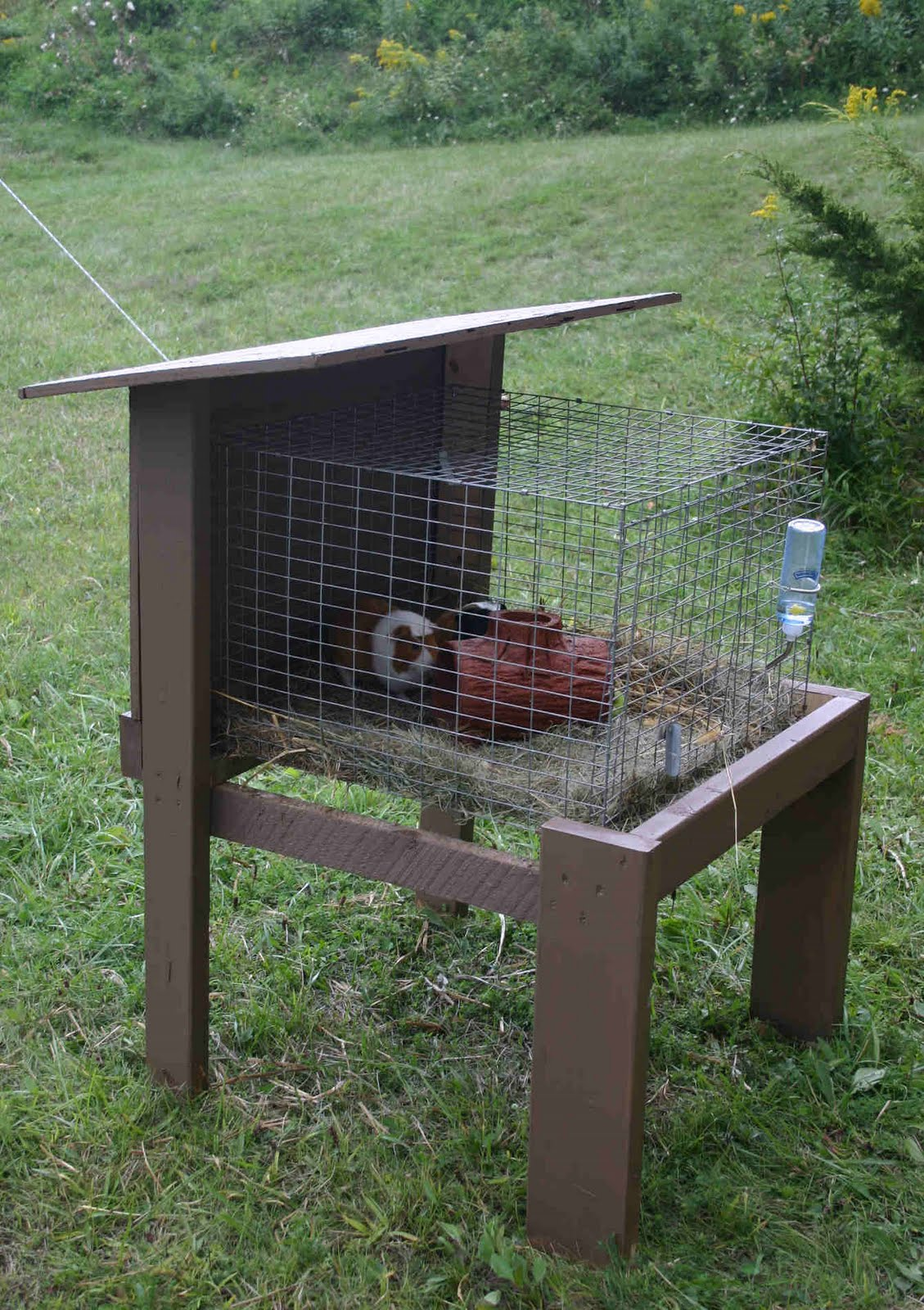 Always creating something at home catching up for Outdoor guinea pig hutch